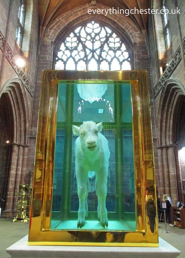 chester cathedral arc art and sculpture exhibition damien hirst the golden calf